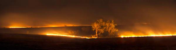 Americana color photograph: Flint Hills Prairie Burn - color. A color photograph by David Zlotky, a fine art photographer.