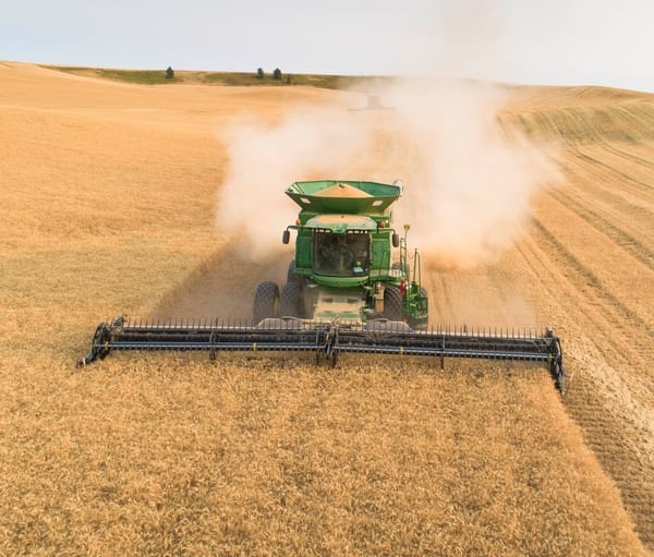 Aerial view of Soft White wheat being harvested in eastern, Washington
