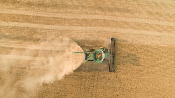 Aerial view of a combine harvesting Soft White wheat in the Palouse region of eastern Washington