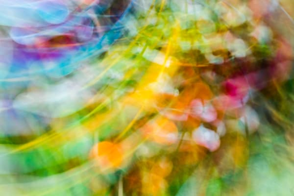 Polychrome Photography Art | allysonmagda