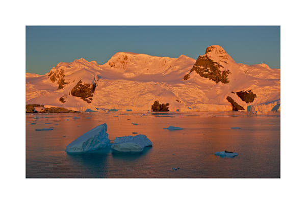 Sunset in Cierva Cove, Antarctica, with Leopard Seal resting on ice flow.
