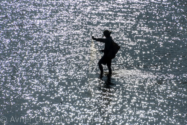 Fisherman with net in glistening water