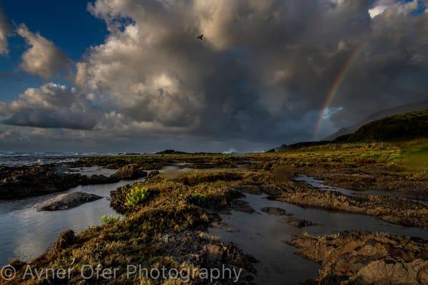Yakushima coastal rainbow