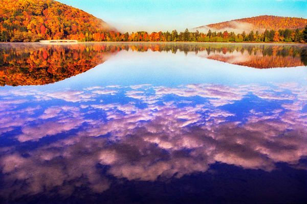 Allegany Reflections