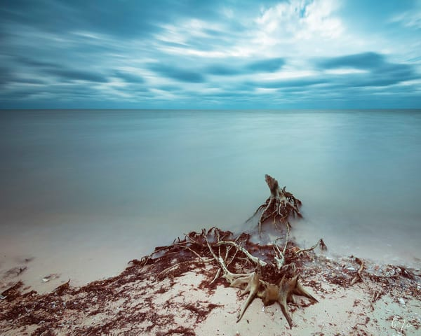 Constance Mier Photography - fine art prints of florida beaches in the gulf of mexico