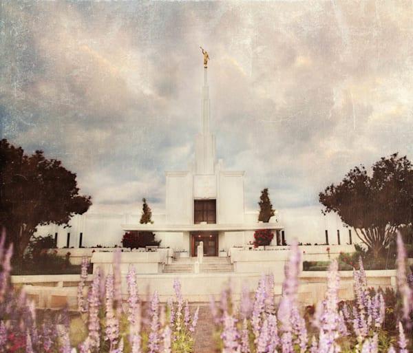 Denver Temple - Peaceful Pondering