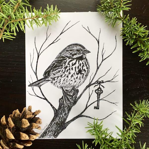 Song Sparrow's Secret