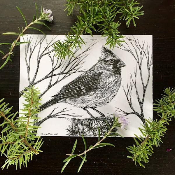 Woodland Cardinal