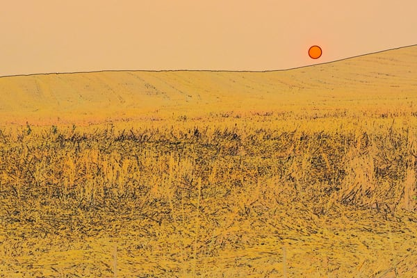 Sunset Over Harvested Field 7478