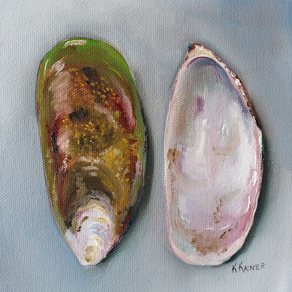 Green Lipped Mussel Shells Art | Kristine Kainer