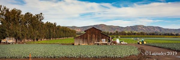 """""""Barn on the Farm"""""""