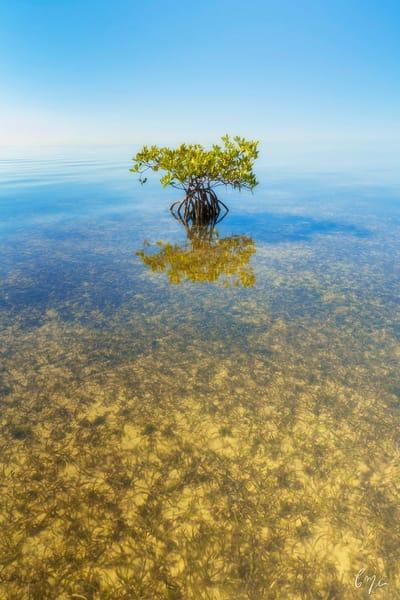 Constance Mier Photography - beautiful waterscapes from Biscayne Bay near Miami Florida