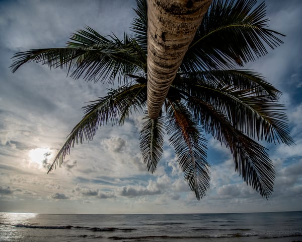 Skies of Tulum