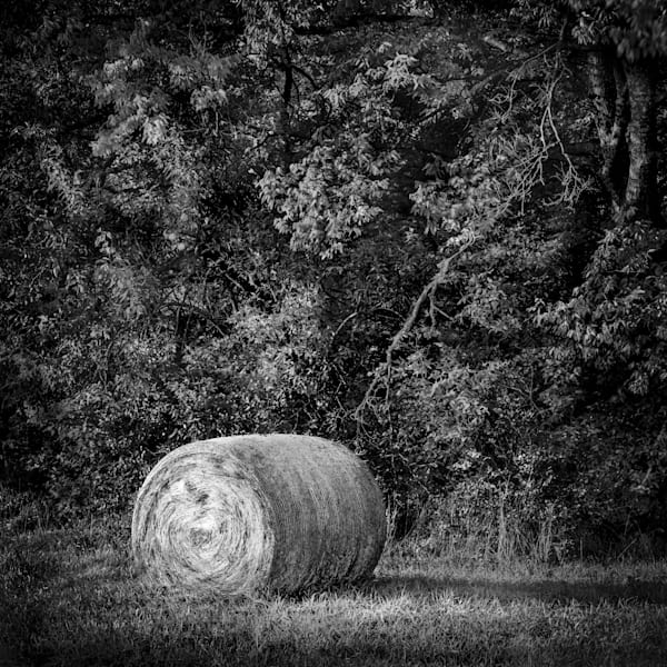 Bring home Kansas in the Fall with this fine art black and white photograph of a hay bale by David Zlotky.