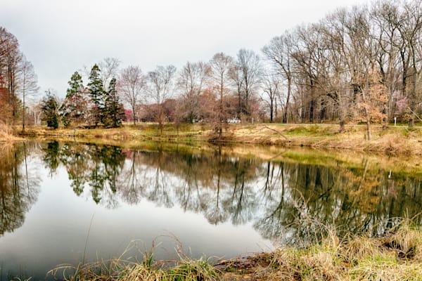 Arboretum Landscapes