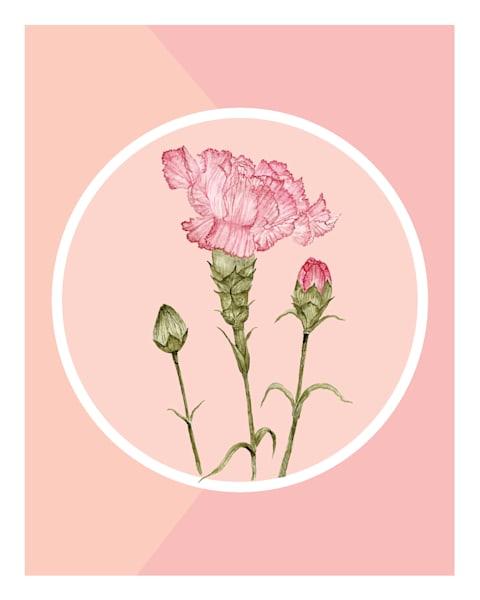 Retro Carnation