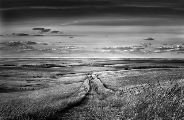 The Hills are Alive Collection - bw | Prairie Road - the Kansas Flint Hills - bw. Fine art, black and white photograph by David Zlotky