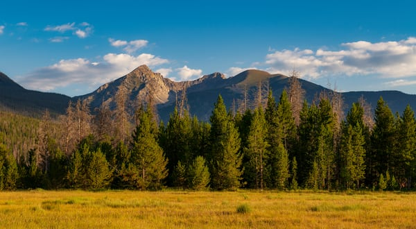 Photo of Baker Mountain from Meadow in Rocky Mountain National Park, Colorado