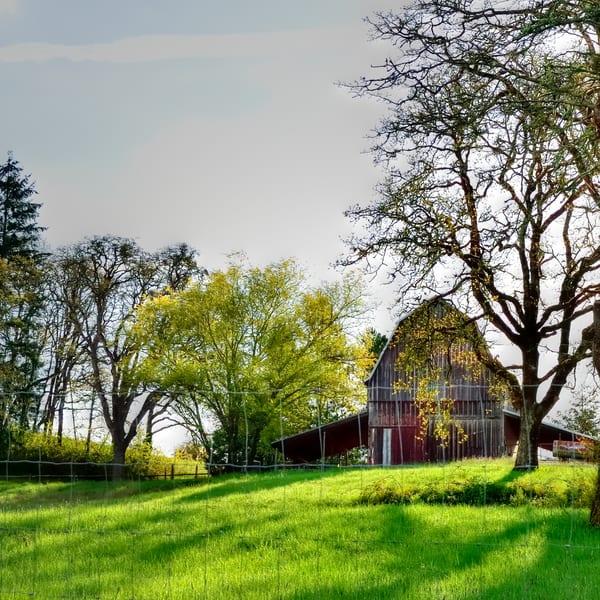 Barn Pasture Fence
