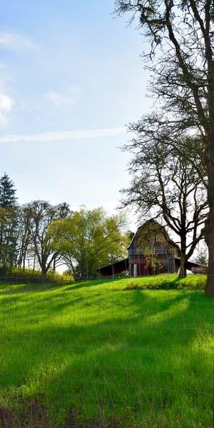Barn On Oak Springs Farm Road