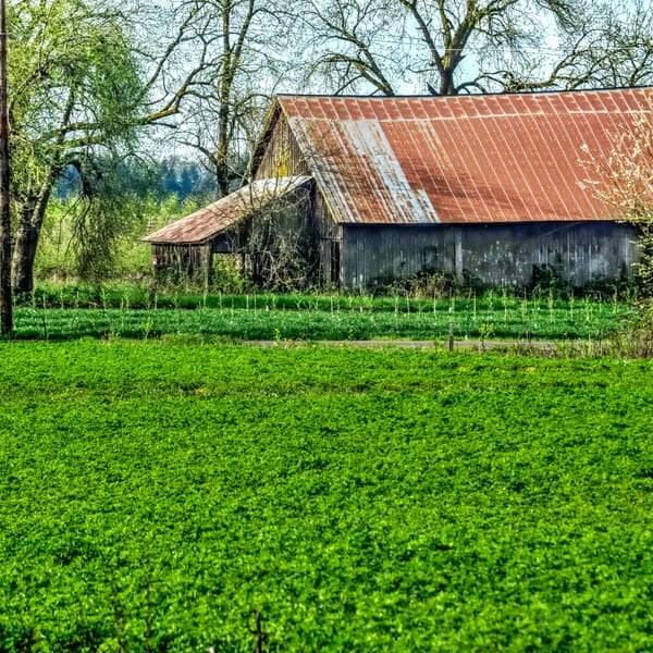 Barn On Mineral Springs Road