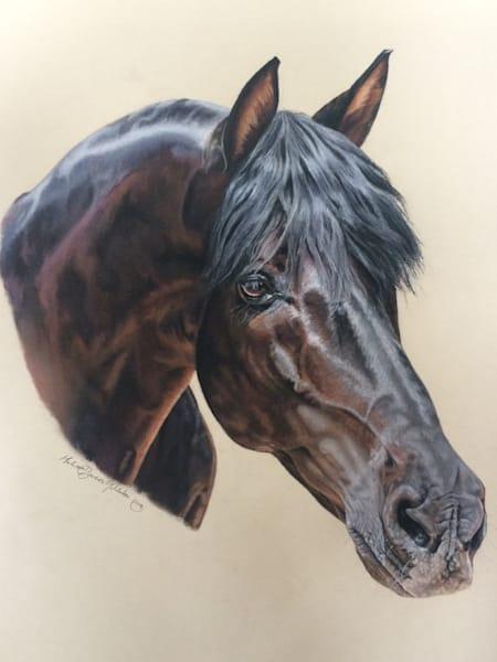 Commission   Head Portrait Custom Framed, Usa Art | Tohlakai Art