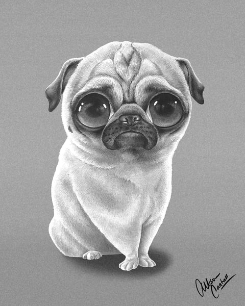 Puggy Eyes - fine art Pug print from BunnyPigs
