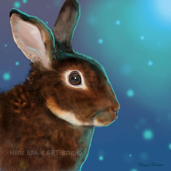 Custom Rabbit Portrait