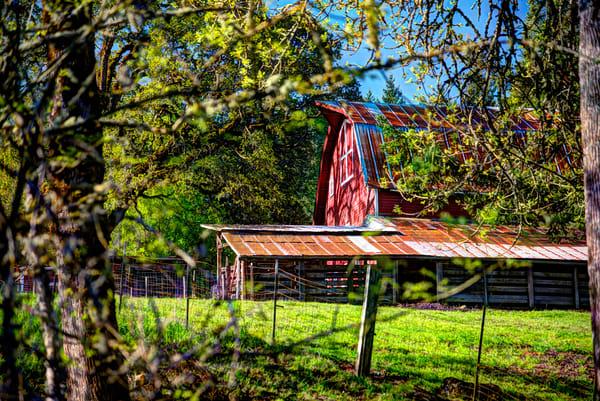Amity Road Barn 1
