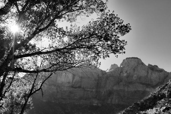 Peek Photography Art | Beth Houts Photography