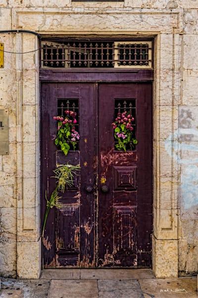 Old, door, maroon, lisbon, portugal, rose, dead