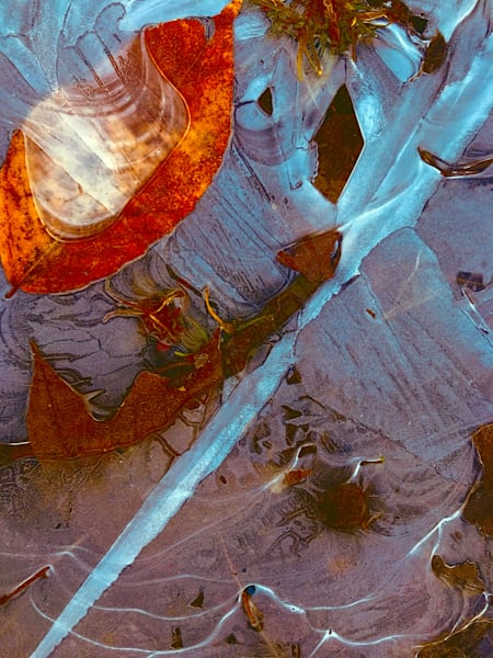 Icing Undone|Fine Art Photography by Artist Todd Breitling