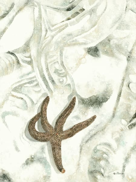 A print on gallery wrapped canvas by watercolor artist Sandra Galloway of a Starfish making its way across the beach making patterns in the sand. Vertical orientation