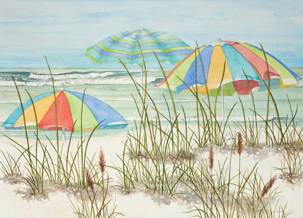 Print on stretched canvas of an Apple Murex shell by watercolor  artist Sandra Galloway