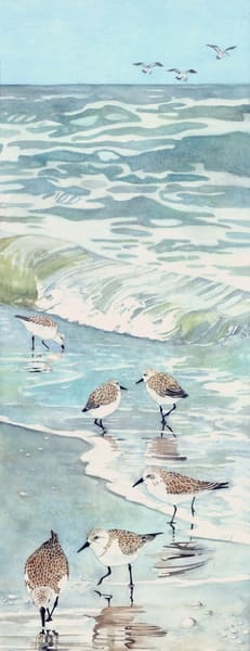 A watercolor print on stretched canvas by Sandra Galloway of a flock of sandpipers enjoying a walk along the shoreline.