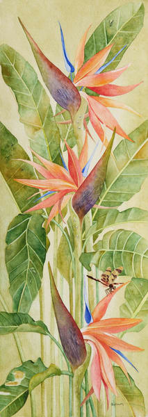 A print on stretched canvas by watercolor artist Sandra Galloway of a colorful orange bird of paradise with a dragonfly sitting on a blossom.