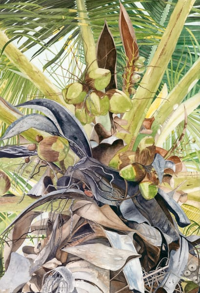 A print on stretched canvas by watercolor artist Sandra Galloway of looking up a green-colored coconut palm