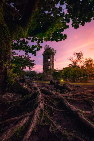 'Vines & Towers' Photograph by Jess Santos for sale as Fine Art