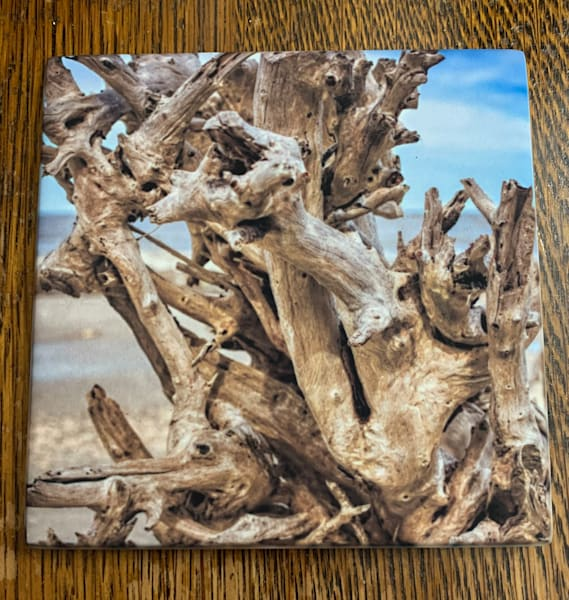 Driftwood Coaster