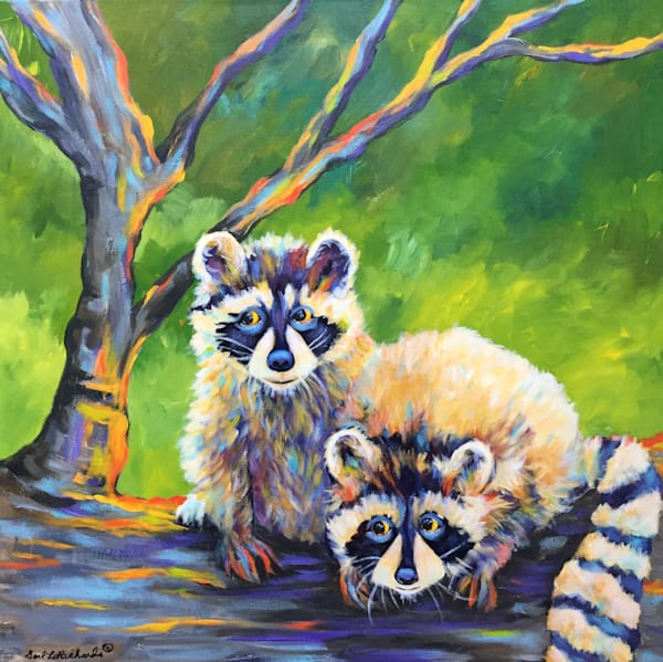 Raccoons Revised 2