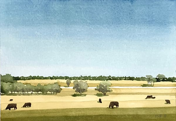 Fields of Lampasas