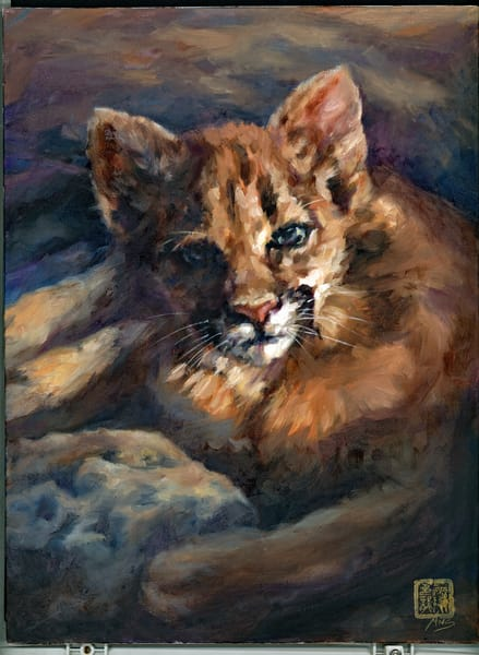 Cougar cub in the sun, oil on linen by Ans Taylor, now available as art print on canvas