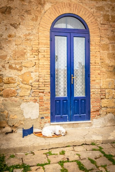 Guarding the Blue Door | Jim Parkin Fine Art Photography