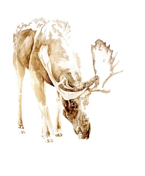 Snowy Moose - Coffee Print