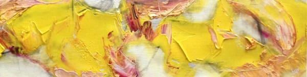 Stellar Wind Art | Artist Don Lisy
