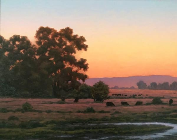 Northern California Oaks, Cattle and Wetlands