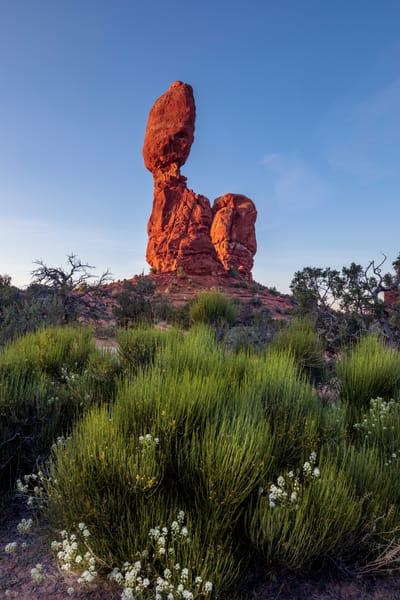 Spring at Balance Rock