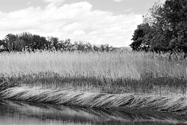 Marshlands Piermont