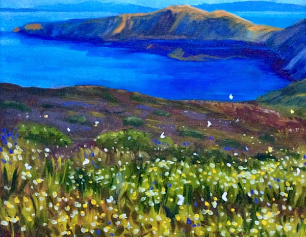 View From The Slopes II Santorini Wildflowers by American Artist Hilary J England