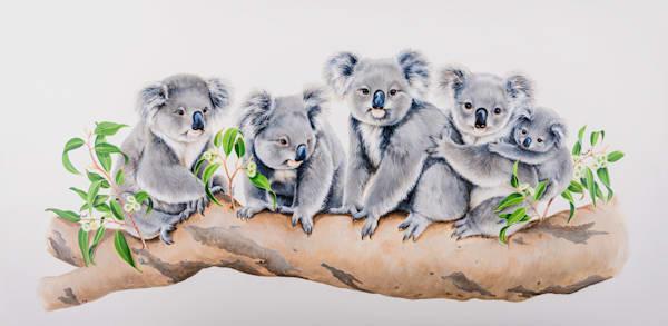 Koala Company - Koalas On A Branch Painting by Natalie Jane Parker | Australian Native Wildlife